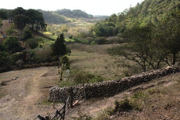 Tisey Reserve