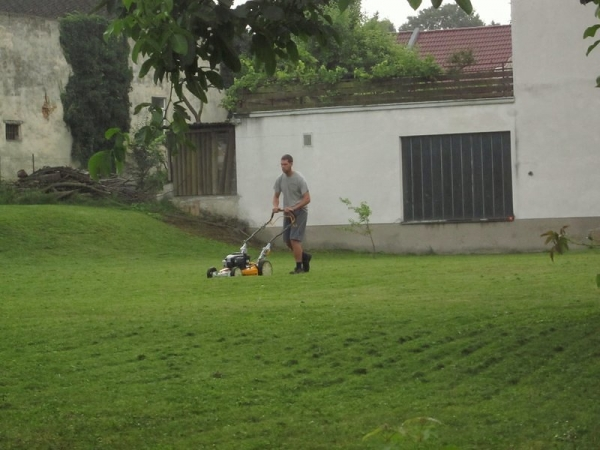 Cutting grass at the apartment