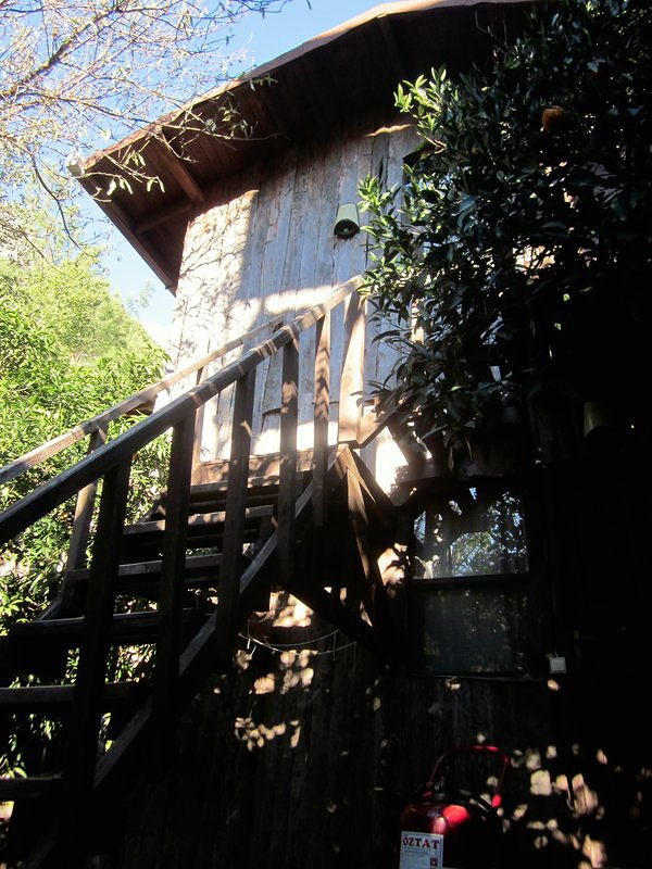 Tree Houses - Olympos