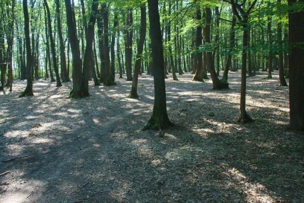 Park - Zagreb