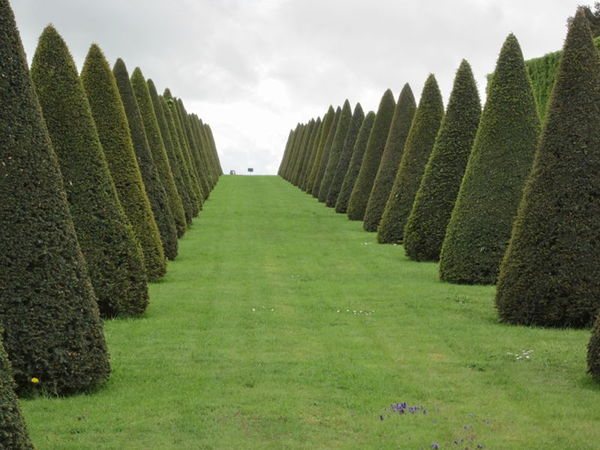 Gardens at Versailles