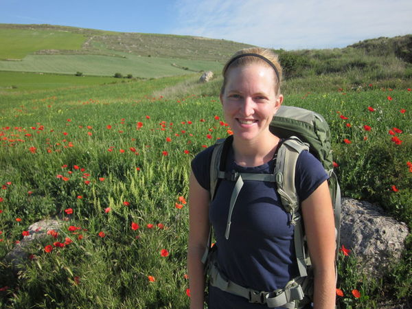 Poppies, poppies, everywhere!