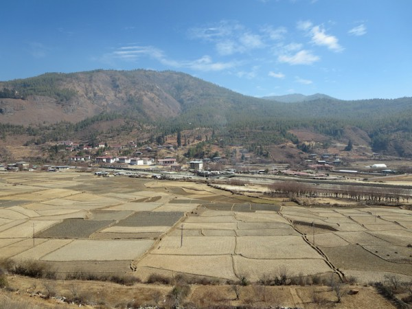 More of Paro valley